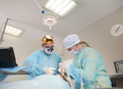 IX Международный Имплантологический конгресс г. Москва